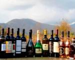 I vini georgiani presentati ad un concorso internazionale
