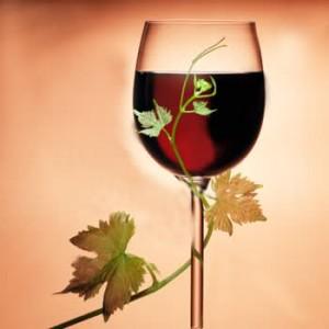 bicchiere di vino georgiano