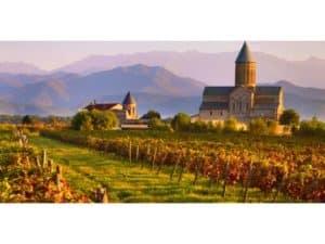 Tour vinicolo Ingeorgia